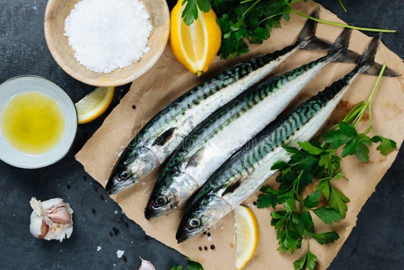 Świeża makreli ryba z składnikami gotować obraz stock