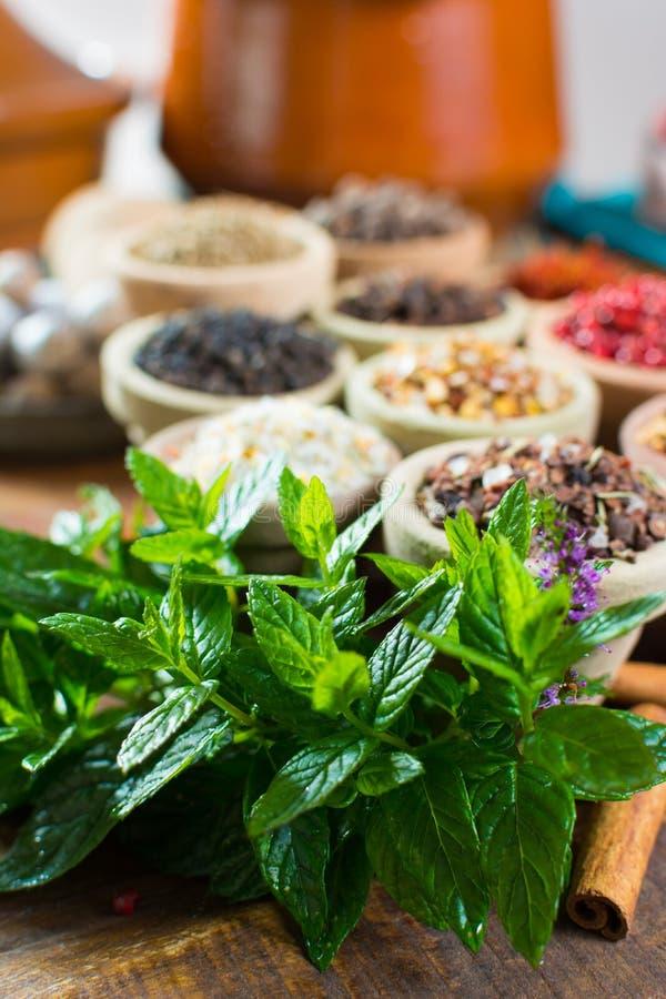 świeża miętówka spearmint liście, roślina, przygotowywająca używać, dobra zdjęcia stock
