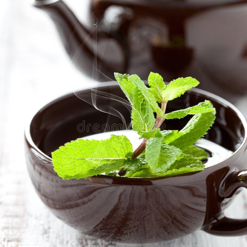 świeża miętowa herbata fotografia stock
