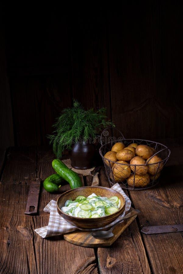 Świeża ogórkowa sałatka z jogurtu i potomstw grulami fotografia stock