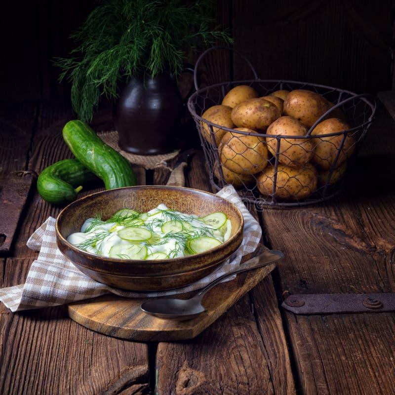 Świeża ogórkowa sałatka z jogurtu i potomstw grulami zdjęcie royalty free