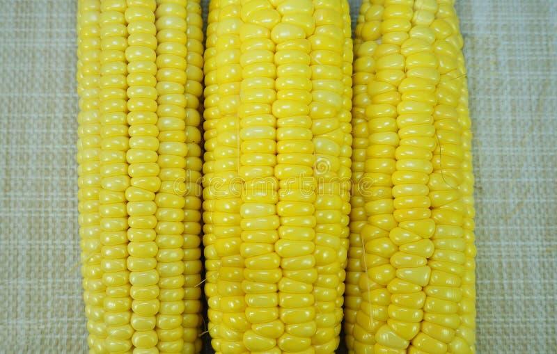 Świeża organicznie żółta słodka kukurudza zdjęcie stock