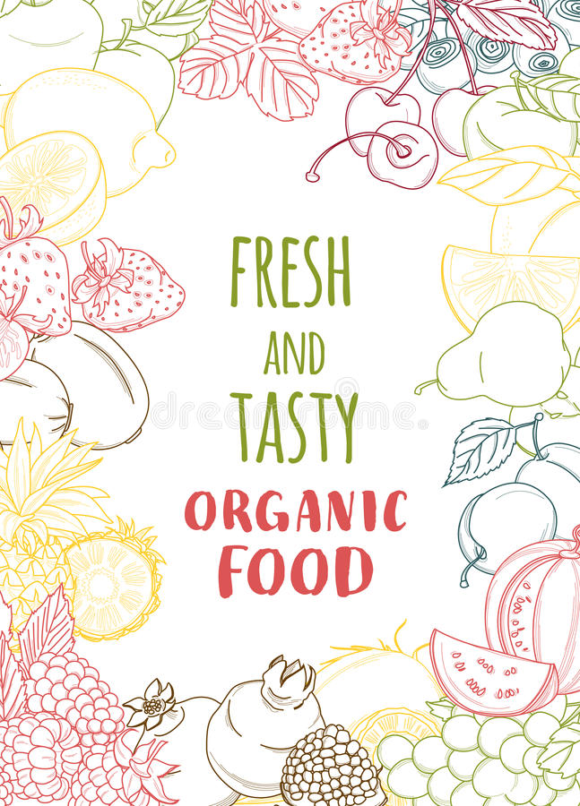 Świeża organicznie wiosny lata owoc i warzywo rama kontur royalty ilustracja