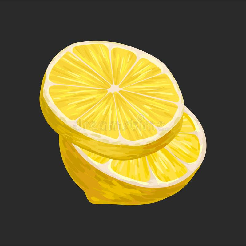Świeża pokrojona cytryna, kwaśna cytrus owoc wektorowa ilustracja na czarnym tle ilustracja wektor