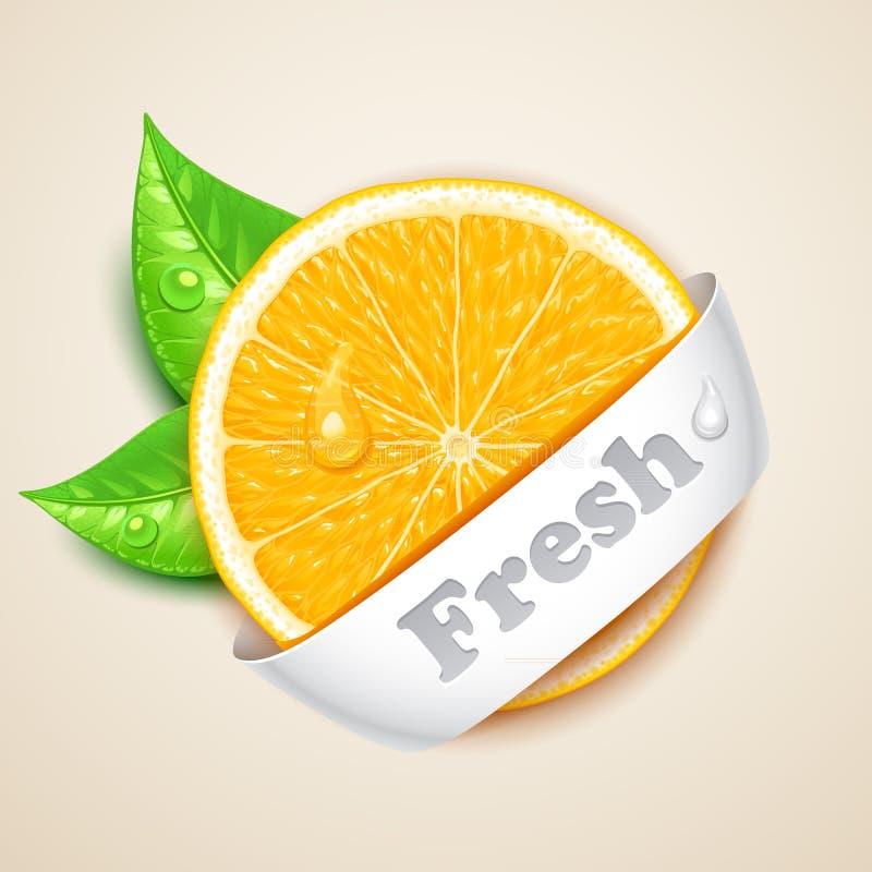 Świeża pomarańcze ilustracji
