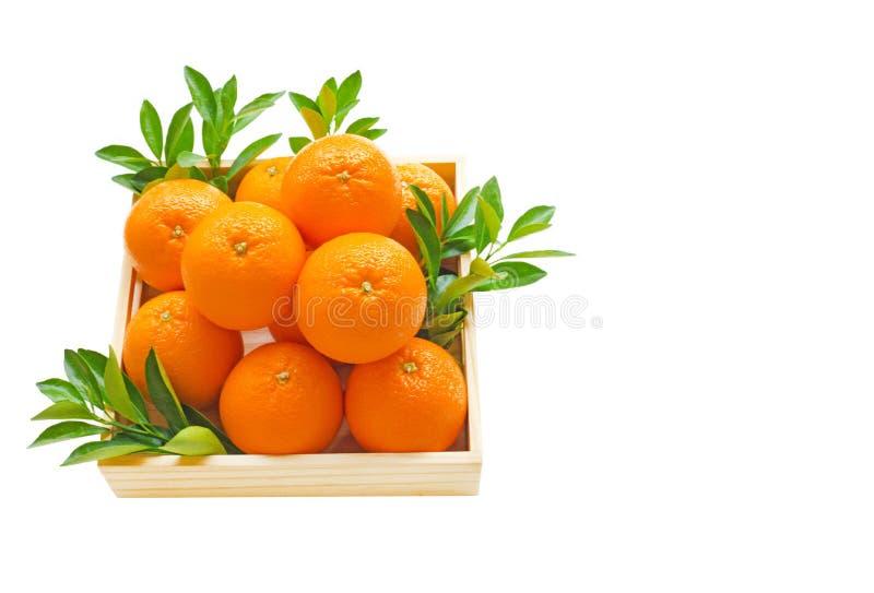 Świeża pomarańczowa cytrus owoc w drewnianym pudełku fotografia royalty free