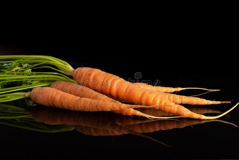 Świeża pomarańczowa marchewka na czarnym szkle zdjęcia stock