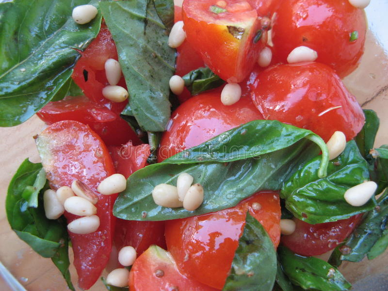 Świeża pomidorowa sałatka z basilem i sosnowymi dokrętkami fotografia stock