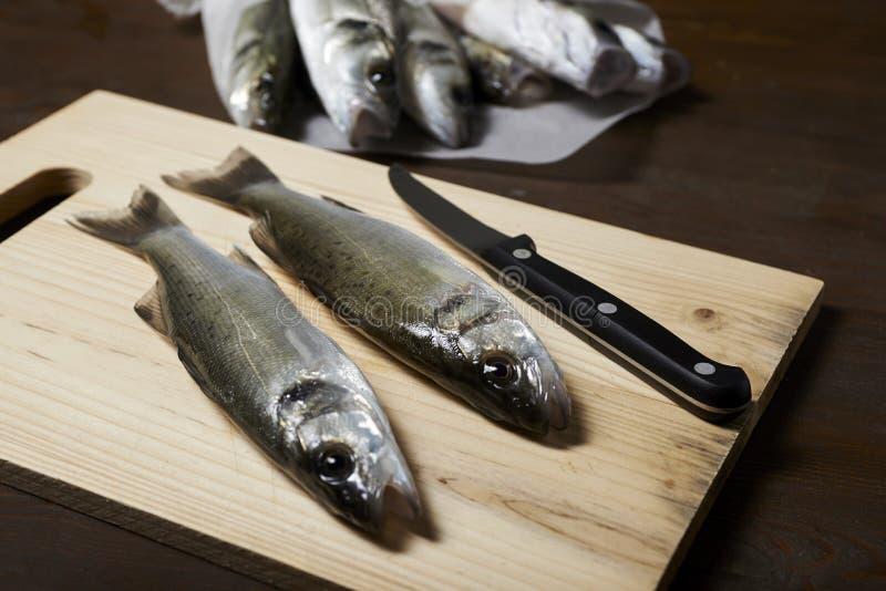 Świeża ryba, denny bas zdjęcie royalty free