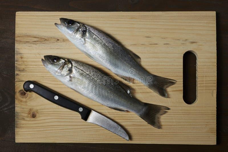 Świeża ryba, denny bas obrazy stock