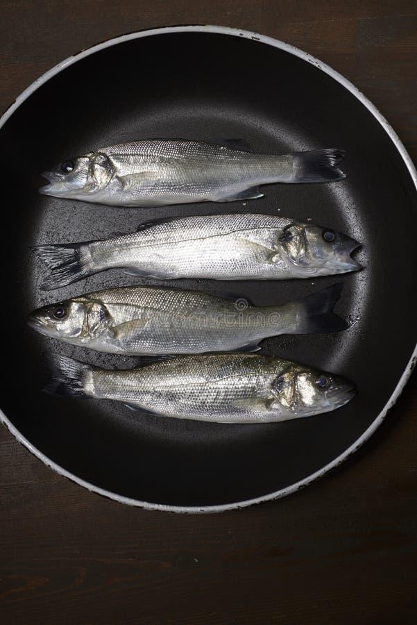 Świeża ryba, denny bas obraz royalty free