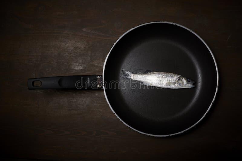 Świeża ryba, denny bas zdjęcie stock