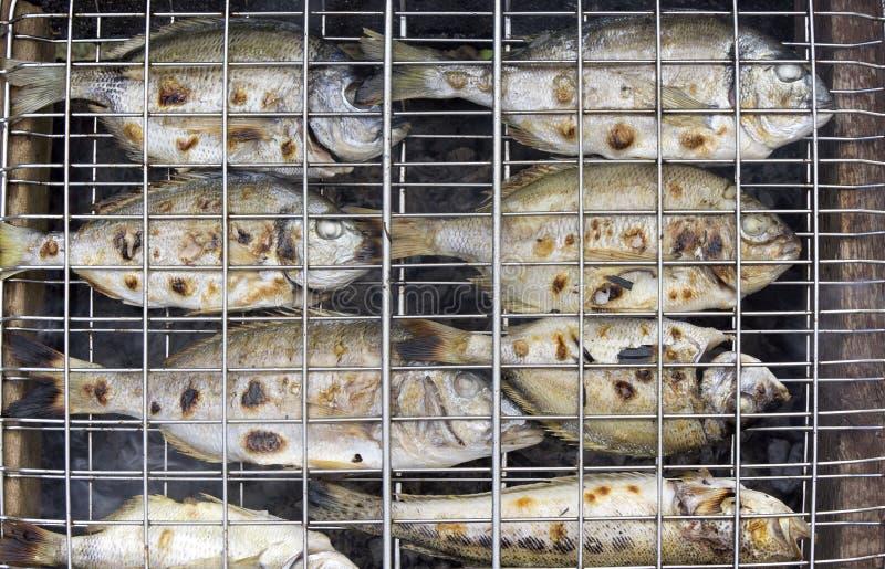 Świeża ryba na grillu zdjęcia stock