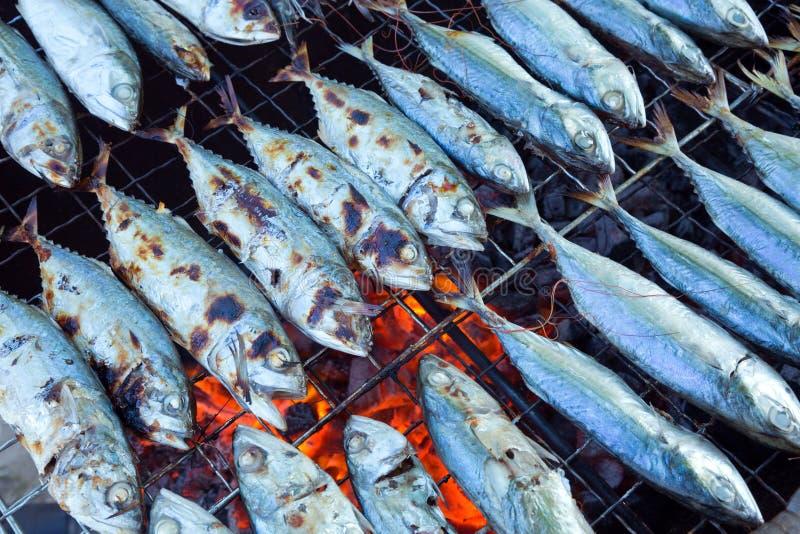 Świeża ryba od dennego grilla zdjęcia stock