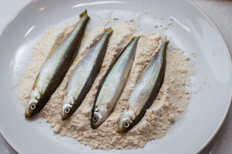 Świeża ryba w talerzu z mąką zdjęcia stock