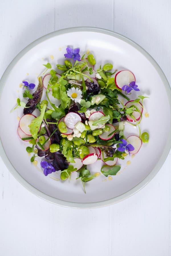Świeża sałatka z szerokimi fasolami, rzodkwią i fiołkami, zdjęcie stock
