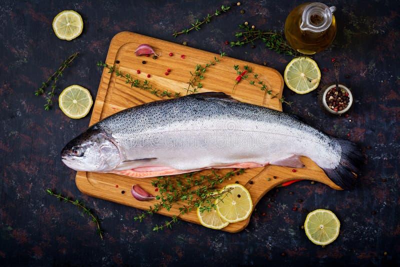 Świeża surowa łososiowa czerwieni ryba na ciemnym tle Mieszkanie nieatutowy fotografia stock