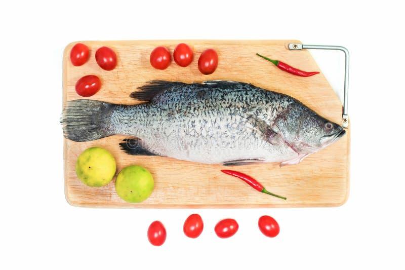 Świeża surowa Azjatycka Dennego basu ryba na drewnianej tnącej desce z cytryną, pomidorem i chili na białym tle, odgórny widok Ow fotografia royalty free