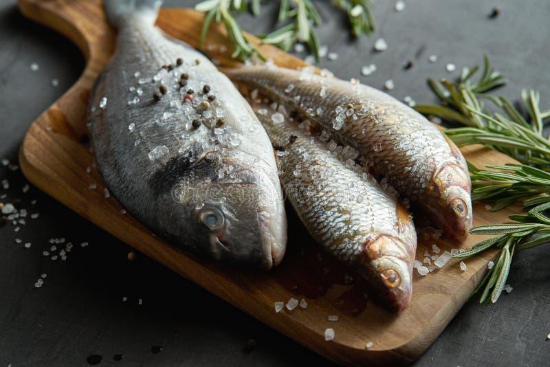 Świeża surowa dorada ryba na drewnianej desce z sprig rozmaryny na czarnym stole zdjęcia stock