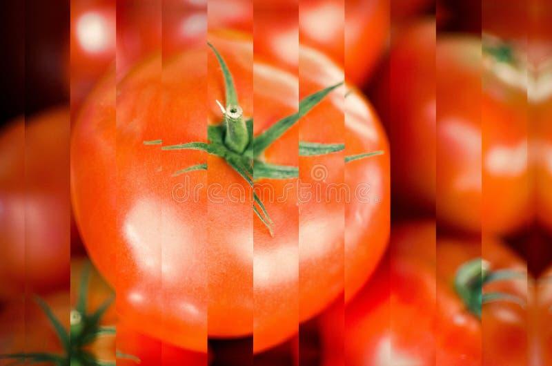 Świeża sztuka abstrakcyjna czerwonego pomidora zdjęcia stock