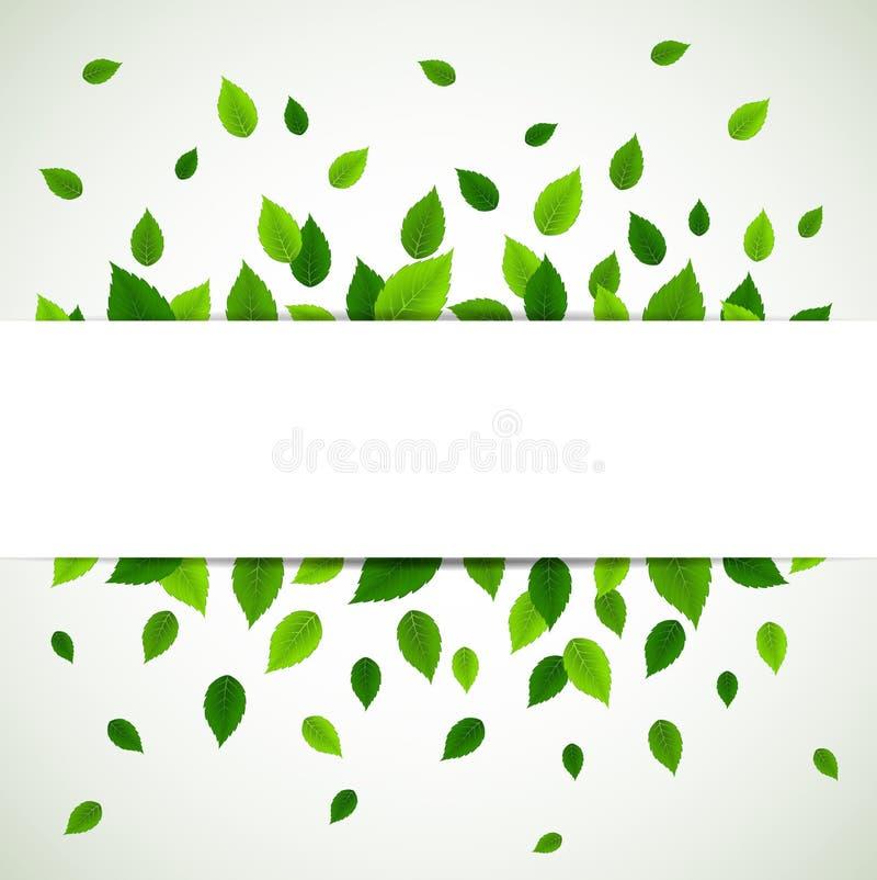 świeża tło zieleń opuszczać naturę royalty ilustracja