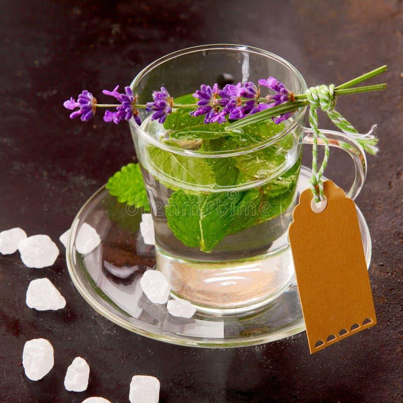 Świeża zielona Miętowa herbata w filiżance z pustą etykietką obrazy stock