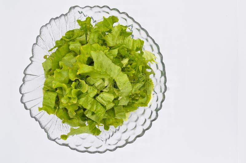 Świeża zielona sałata opuszcza, ideał dla diety, sałaty sałatka zdjęcie stock