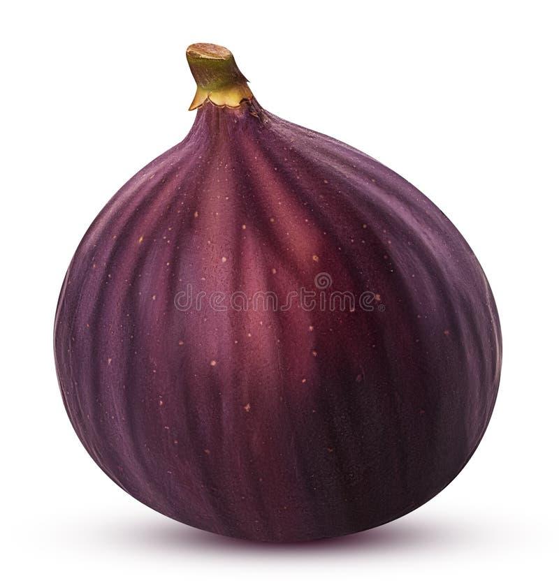 Świeże całe figi owocowe obrazy royalty free
