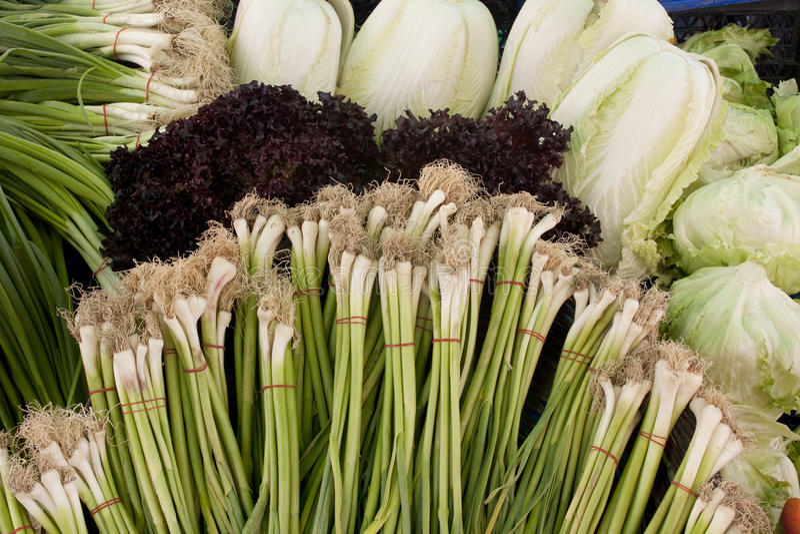Świeże cebule fotografia stock