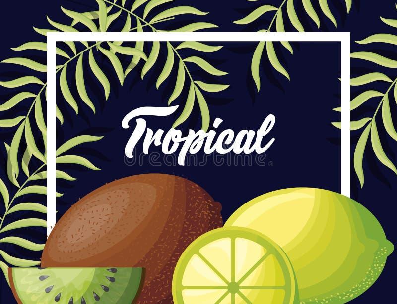Świeże cytryny i kiwi tropikalne owoc ilustracji