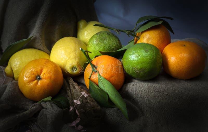 Świeże cytryny, wapno i satsumas, fotografia stock