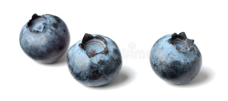 Świeże czarne jagody na białym tle fotografia royalty free