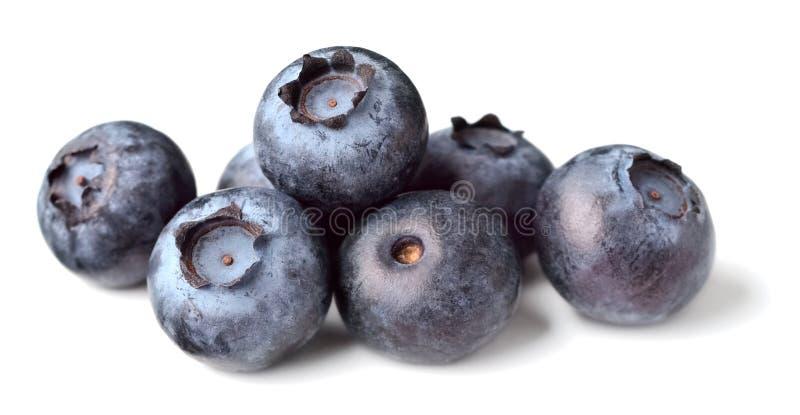 Świeże czarne jagody na bielu fotografia stock
