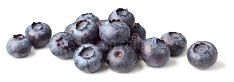 Świeże czarne jagody na bielu obrazy stock