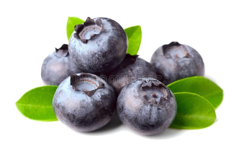 Świeże czarne jagody na bielu zdjęcia stock