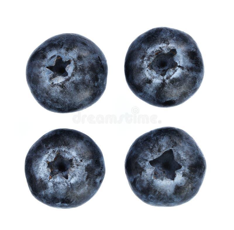 Świeże czarne jagody odizolowywać na białym tle Odgórny widok obraz royalty free