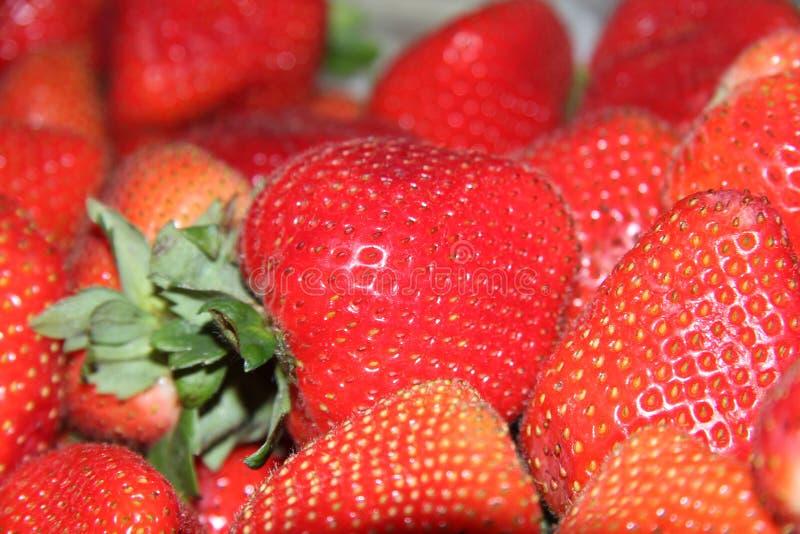 Świeże czerwone truskawki owocowe obraz royalty free