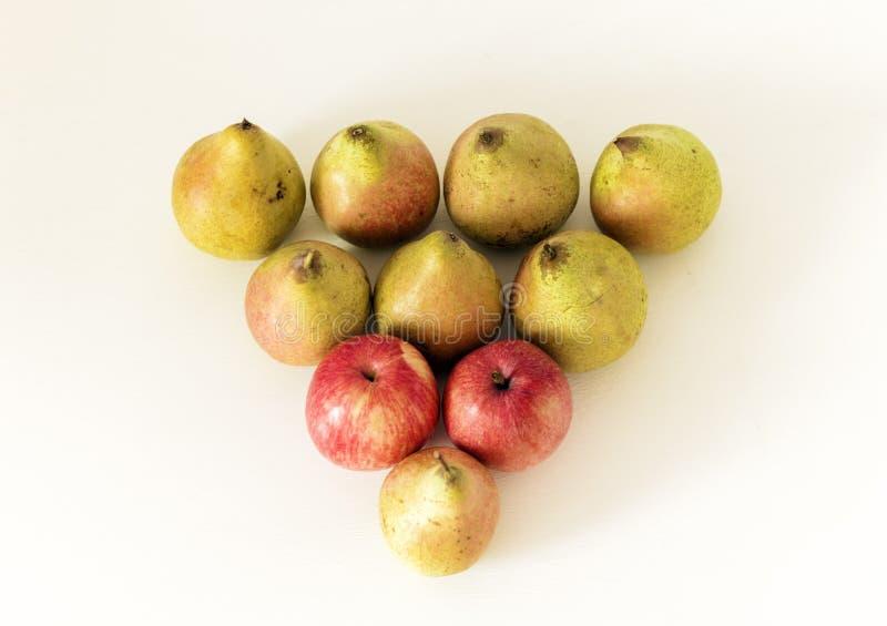 Świeże dojrzałe bonkrety i jabłka na białym tle, jarski pojęcie fotografia stock