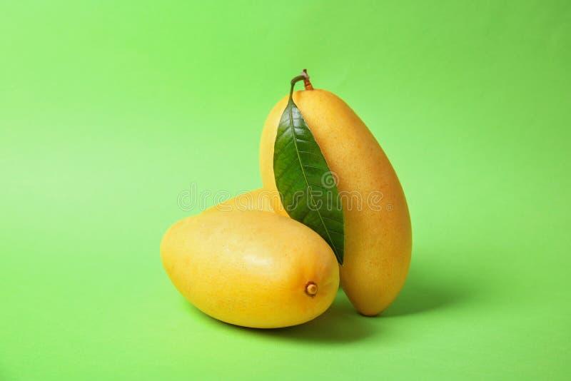 Świeże dojrzałe soczyste mangowe owoc fotografia royalty free
