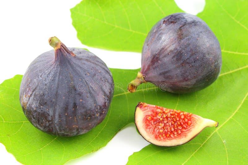 Świeże fig owoc na figa liściu zdjęcie royalty free