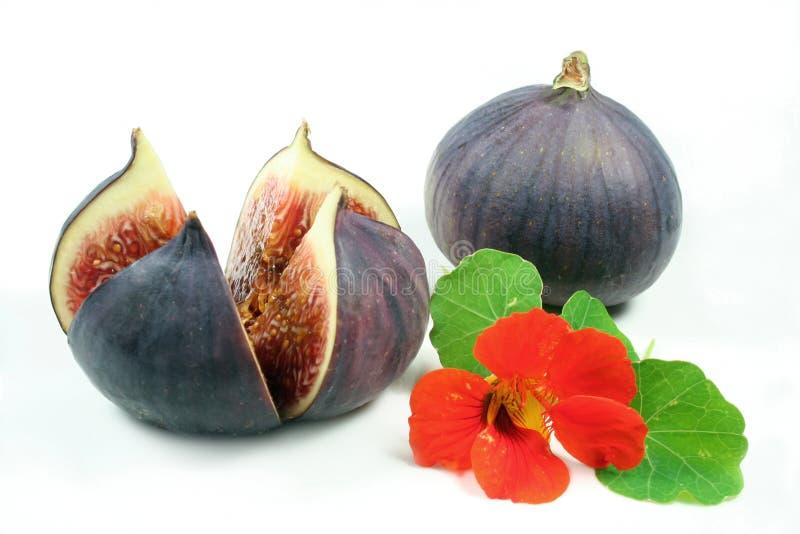 Świeże figi zdjęcie stock