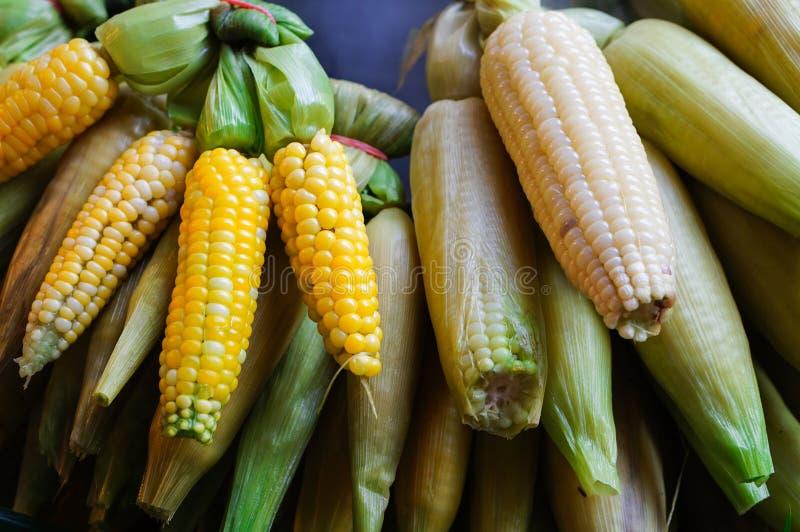 Świeże gotowane i piec kukurudze z łupami zdjęcia stock