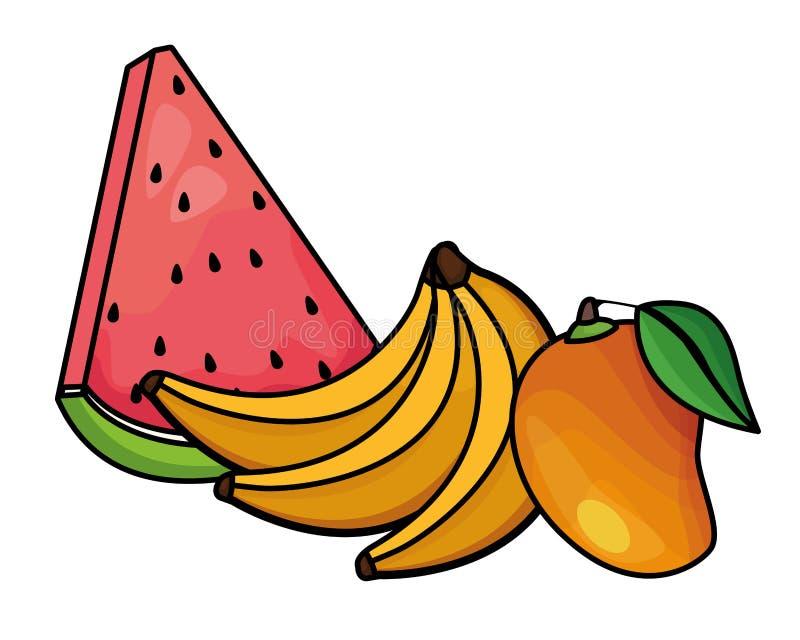 Świeże i wyśmienicie tropikalne owoc royalty ilustracja