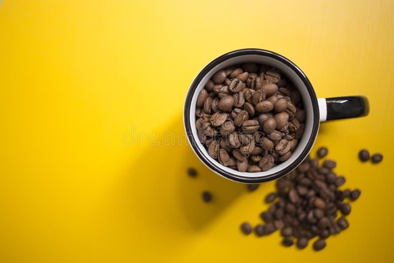 Świeże kaw adra zdjęcia royalty free