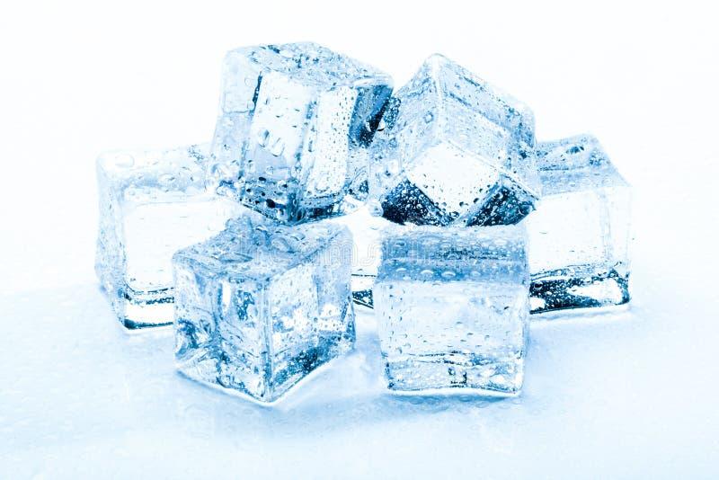Świeże kostki lodu fotografia royalty free
