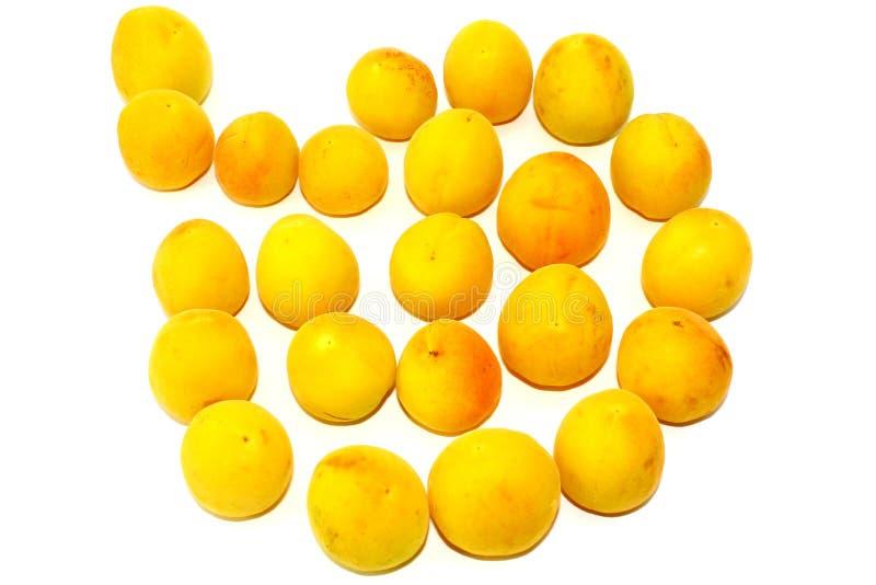 Świeże małe żółte morele na białym tle fotografia royalty free