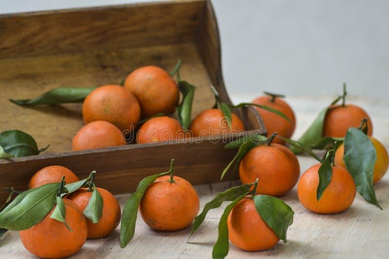 Świeże mandarynek pomarańcze owoc lub tangerines z liśćmi na drewnianym pudełku na stole obraz stock
