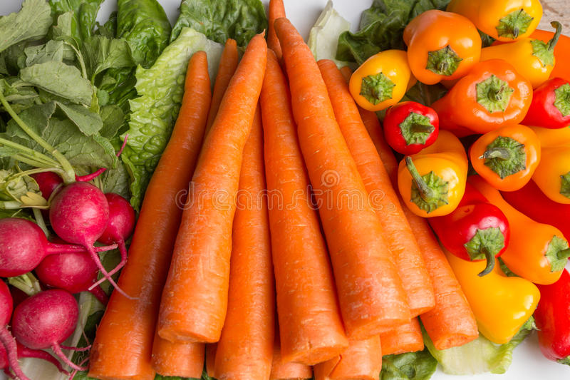 Świeże marchewki, lettus, dzwonkowi pieprze i rzodkwie, obraz stock