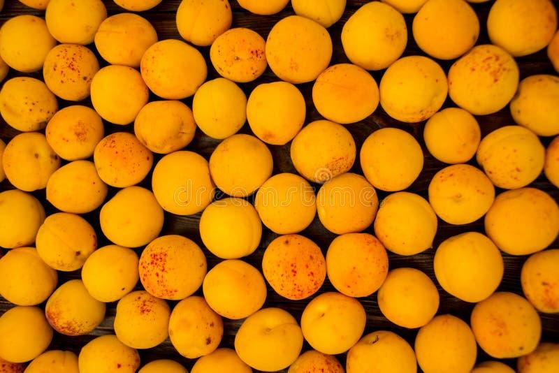Świeże morele jako tło, tekstura, owocowy skład zdjęcia stock