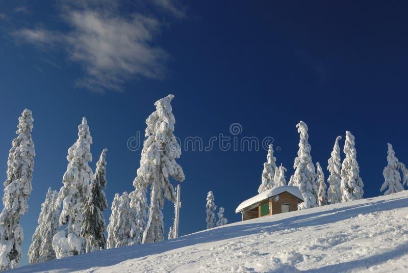 świeże mt kurortu seymour narty śnieg zdjęcia royalty free